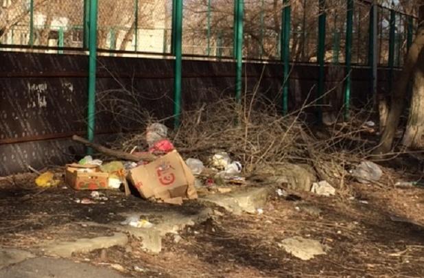 «Назвали ничейной и свалили весь хлам»: в Волгограде мусорные завалы спрятали спортивную площадку