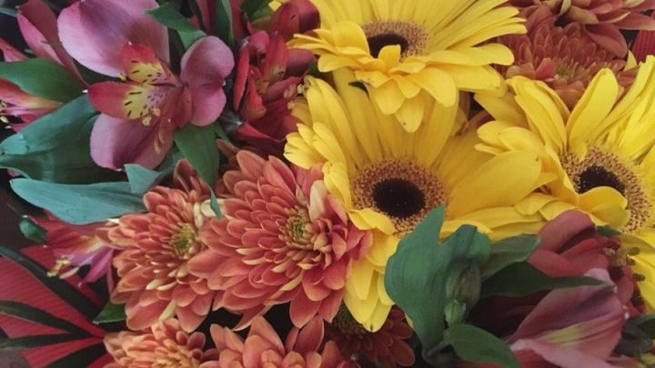 В Уфе вандалыиспортили цветочные клумбы