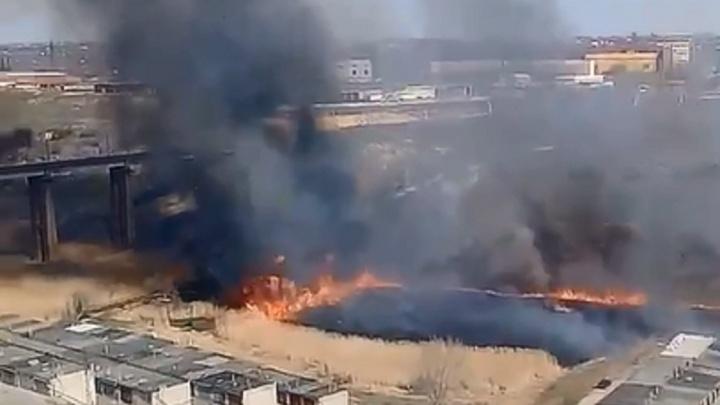Огонь локализован: в Волгограде на Спартановке горит пойма реки Мечётки