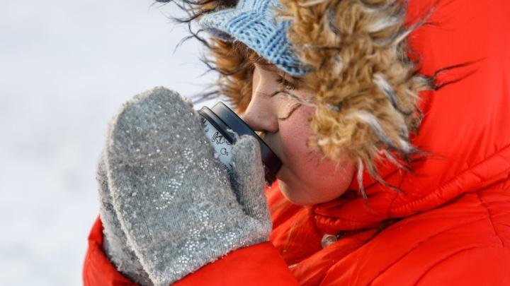 Шквальный ветер, метель, туман и гололёд: мороз-19 ºС покинет Волгоградскую область к пятнице