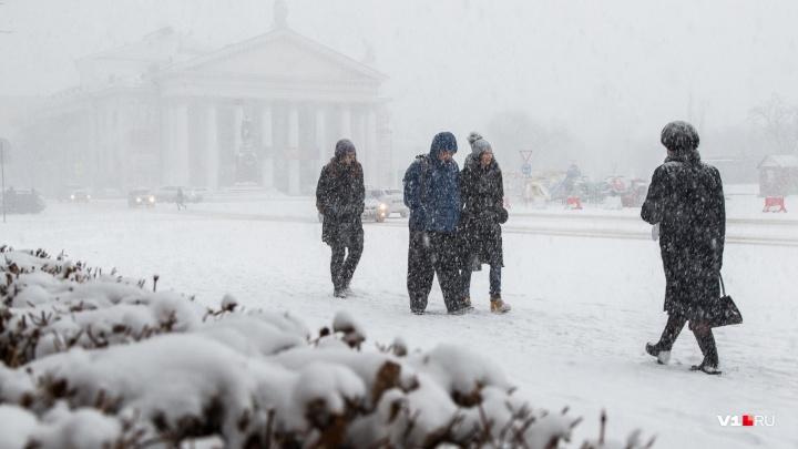Волгоград оказался во власти снежной стихии