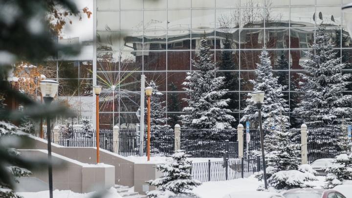 Теплее нормы: синоптики рассказали о погоде в Прикамье на декабрь