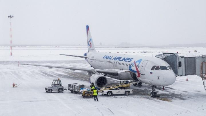 Росавиация закрыла 10 авиарейсов из Волгограда