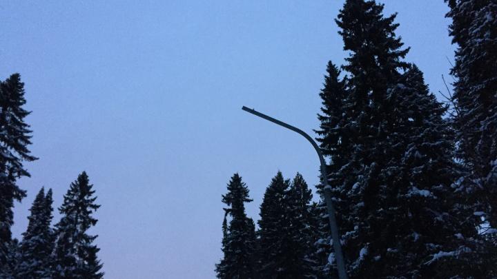 На пермской лыжной базе «Динамо» решили проблему с кражей фонарей — их просто уберут