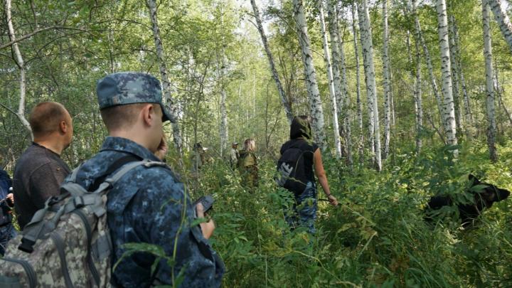 Волонтёры «Лизы Алерт» свернули штаб по поиску 68-летней женщины, которая потерялась в болотах