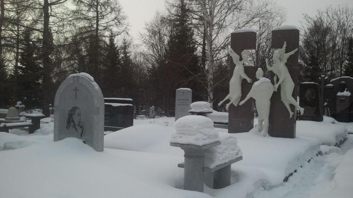 «Даю год на это»: мэр огласил сроки по крематорию в Красноярске