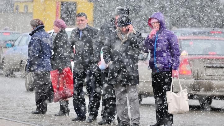 На время откажитесь от своей машины: свердловские спасатели предупредили о сильном снеге и гололеде