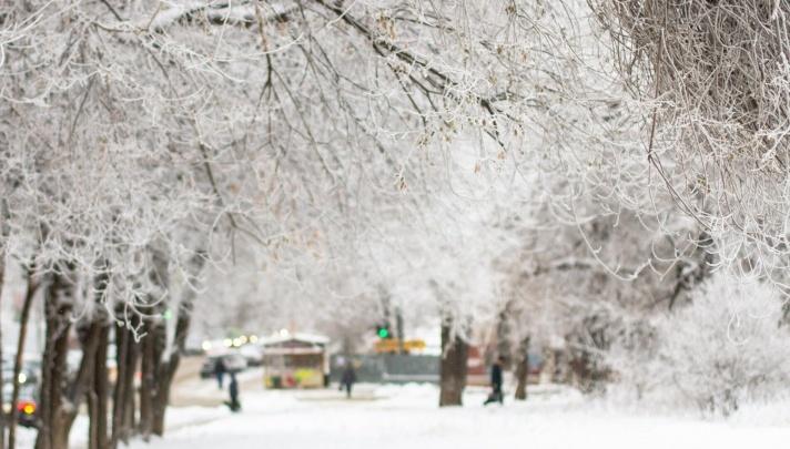 Изморозь в 5 см! В Самарской области объявили штормовое предупреждение на 30 и 31 декабря