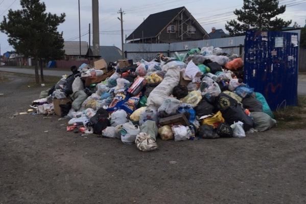 В районах временно поставят бункеры под мусор