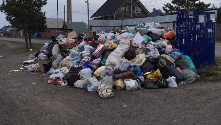 Микрорайонам Кургана грозит мусорный коллапс: от них отказался возчик отходов