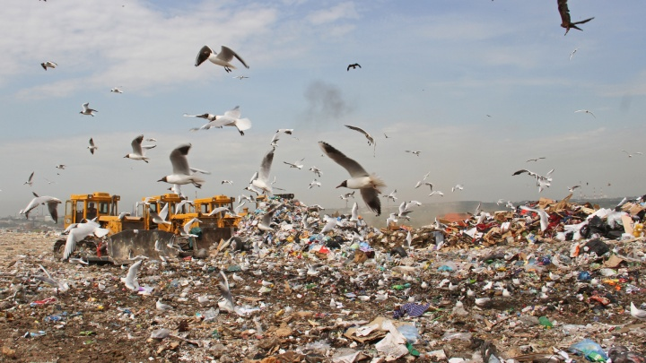 Куда уходят деньги: эксперты — о том, чего не хватает мусорной реформе в Уфе