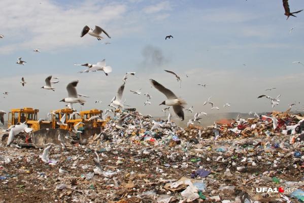 Вот так выглядит полигон для отходов под Уфой