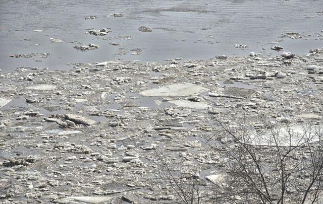 Река Белая в Уфе прибавила почти метр за сутки