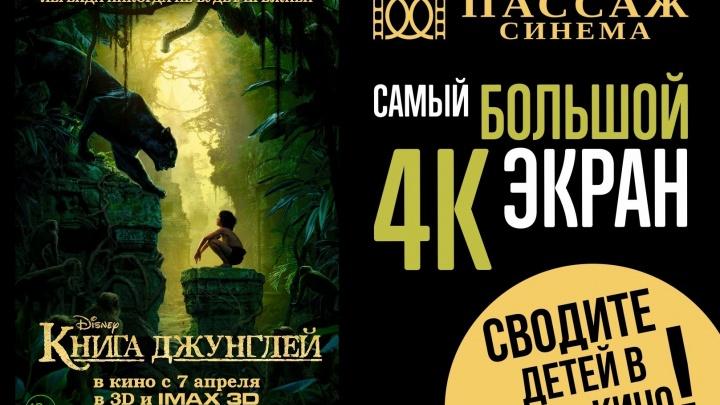 """Уральский Маугли пройдёт по канату в атриуме """"Пассажа"""""""