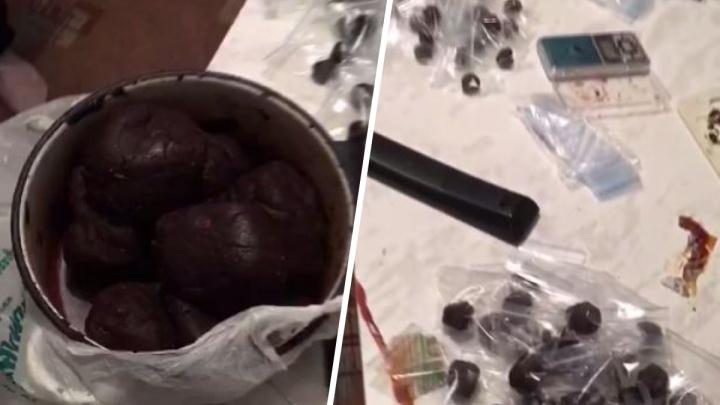Видео: в квартире молодого красноярца нашли наркотики всех видов на 3 млн рублей