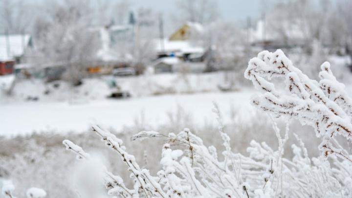 Синоптики пообещали Кургану на этой неделе плюсовые температуры