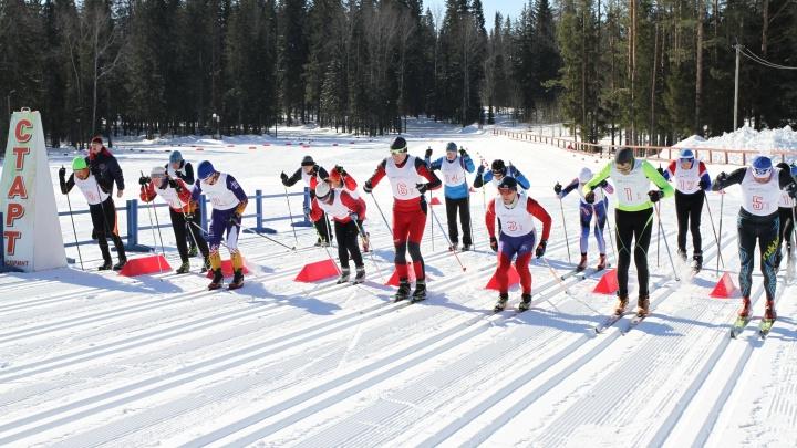 Умные и быстрые: новосибирские геологи победили во всероссийской лыжной гонке