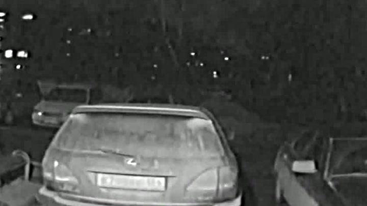 Видео: соседи оставили автохаму на Lexus обидное послание