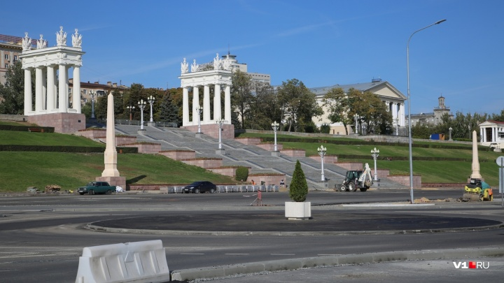На Центральной набережной Волгограда вместо вырубленных ёлок поставили одинокое дерево в кадке