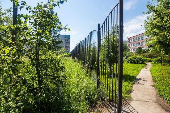 Школьный забор отделяет занявший часть участка сквер от заросшей высокой травой территории с недостроем