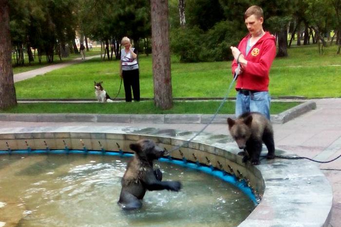 Медвежонок в фонтане в Нарымском сквере