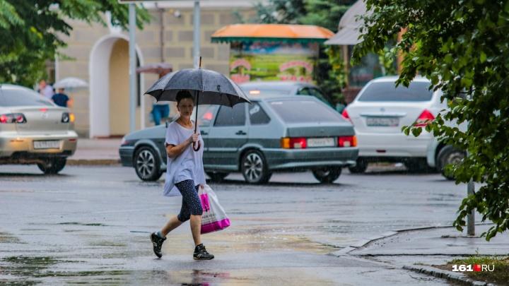 Ливни и сильный ветер: спасатели просят ростовчан отложить загородные поездки
