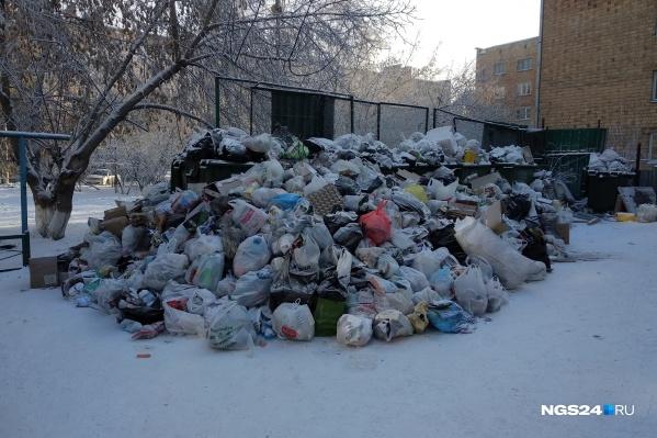 Красноярец рассказывает, что свалка в центре выросла за 5 дней