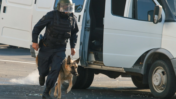 На покупку собак для полиции Ростовской области потратят 845 тысяч рублей