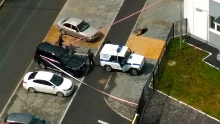 На Сортировке полицейский расстрелял овчарку, которая покусала четверых прохожих