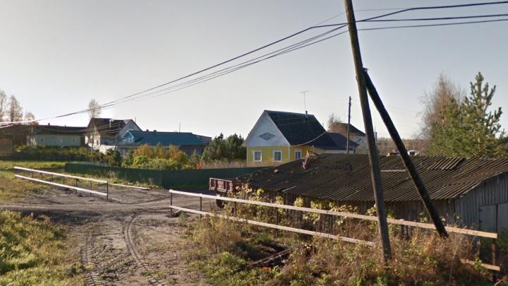 «Потратили деньги на сладости»: в Холмогорском районе двух несовершеннолетних подозревают в краже