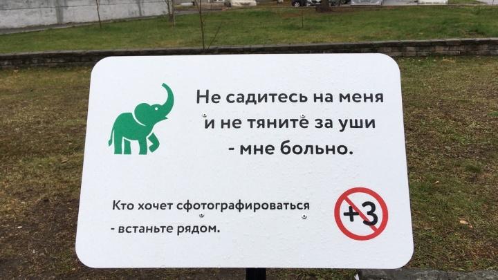 Власти Кургана попросили горожан не ломать вечнозелёного слона