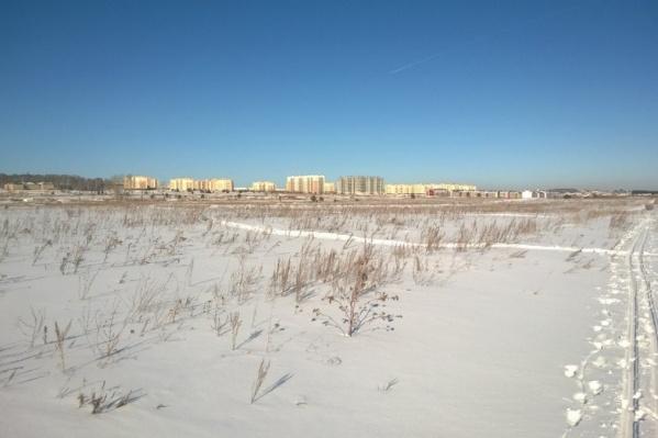 Дорога от посёлка президентов до Челябинска пройдёт в обход СНТ «Петушок»