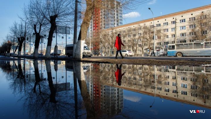 Будут вычерпывать: историческую лужу в центре Волгограда чиновники взяли на особый контроль