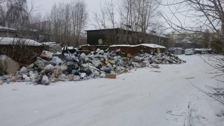 «Горы выше контейнеров»: мусор на Семафорной не вывозят с начала года
