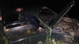 В Рыбинске «Ока» насмерть сбила лося