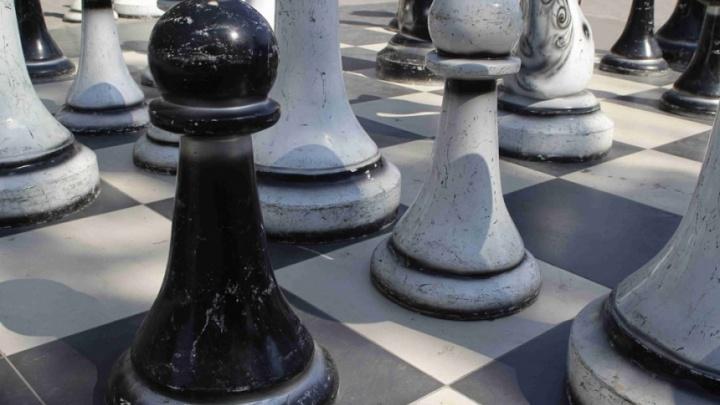 В центре Волгограда разбили доску большого«Шахматного городка»