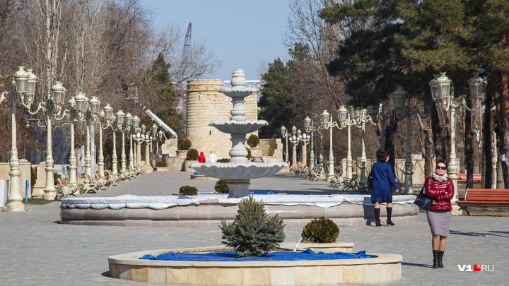 Зима возьмет выходной: Волгоградская область начнет неделю с солнечной и по-весеннему теплой погоды