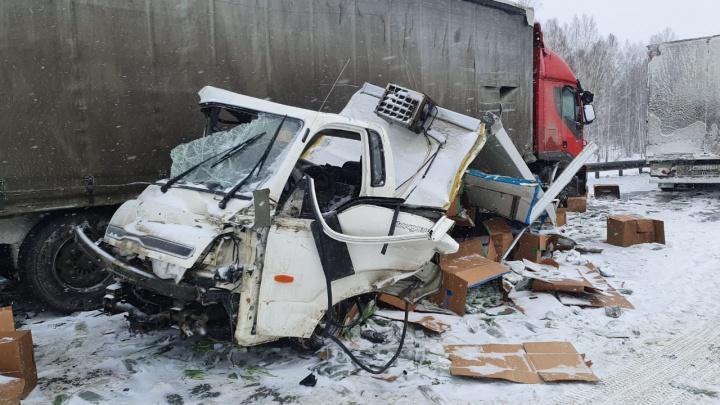 «Пробка километров 15»: трассу Кемерово — Новосибирск перекрыли из-за массовой аварии