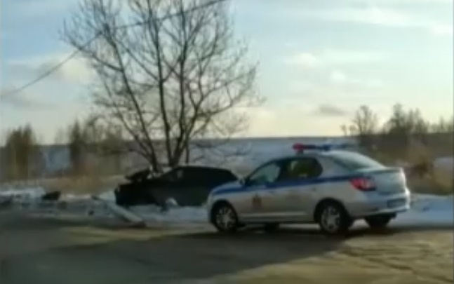 В Солнечном пьяный водитель разбил «Солярис» о дерево
