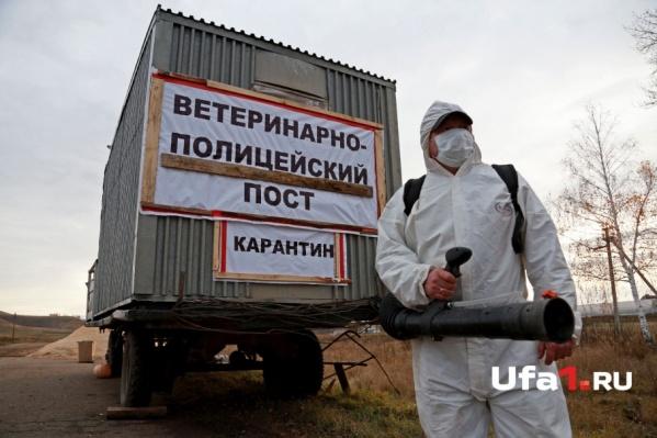 Между фермерами распределят 30 миллионов рублей