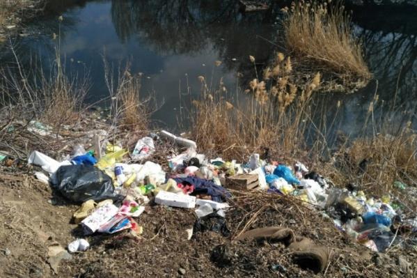 Уже три года зловонное озеро не просыхает на севере Волгограда