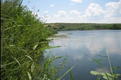Карьер, где погиб мальчик, находится в Советском районе Челябинска