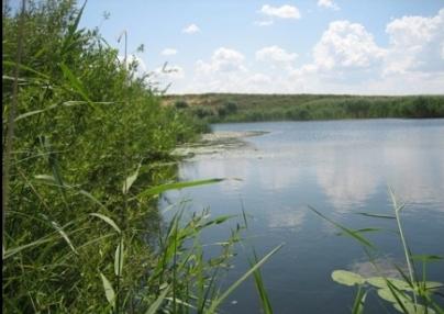 «Купался с друзьями в карьере»: в Челябинске утонул 13-летний подросток