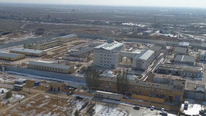 В Волгоградской области пособница ИГИЛ провела голодовку
