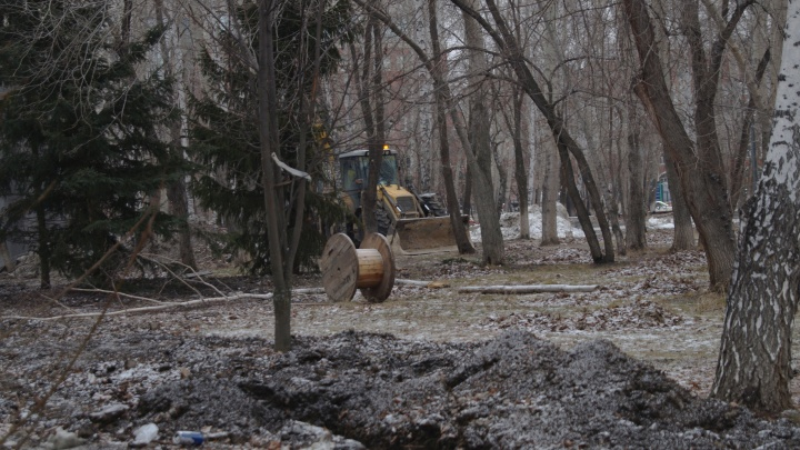 Во время благоустройства сквера Якова Неумоева подрядчик повредил деревья