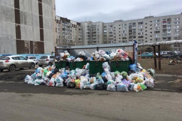 Мешками с мусором завалены как сами контейнеры, так и пространство рядом с ними