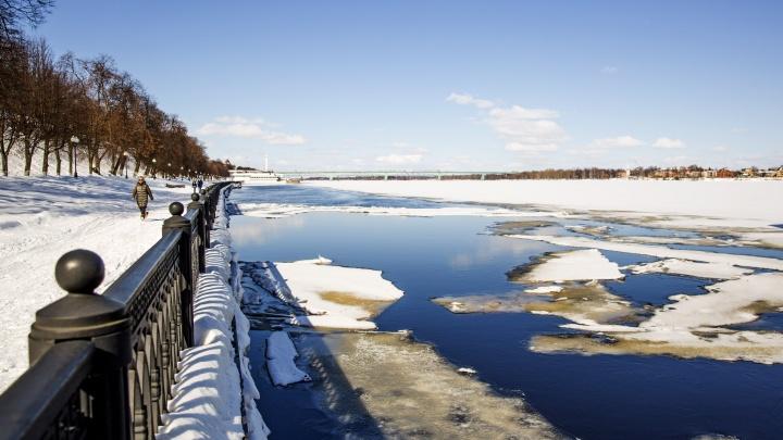 «Накроет мощная волна с Гольфстрима»: когда в Ярославле станет солнечно и тепло
