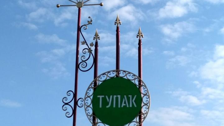 В башкирском селе за ночь убили двух женщин, одна из них была инвалидом детства
