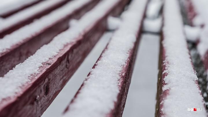 МЧС предупреждает об усилении заморозков в Прикамье