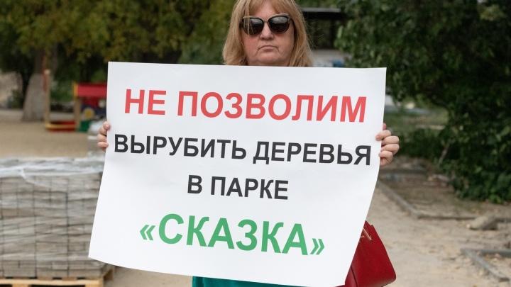 «Не допустим вырубки деревьев»: горожане требуют сохранить деревья в обновляемых парках Волгограда